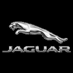 Ключове Jaguar